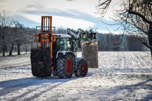 Holz Im Winter-3