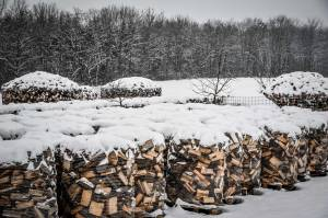Holz Im Winter-5